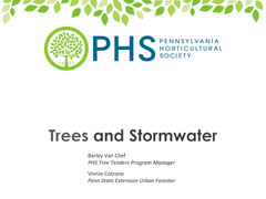 Trees & Stormwater